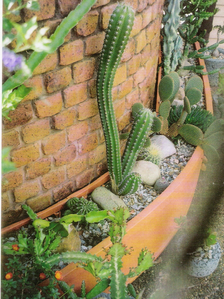 Luxury Curved Fibregelass Planters For Modern Garden Design  |Arched Planters