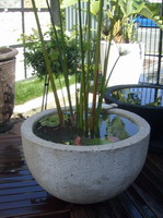 large garden water bowl with plant, off white lava stone finish