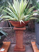 medium size garden planter bowl with plant on pedestal, iron verdi semi formal finish