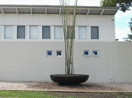 giant japanese style plant bowl on base plinth, black semi formal finish, bamboo planter