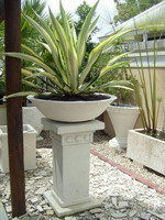 Planter bowl and plinth with pattern at top, custom white semi formal finish.